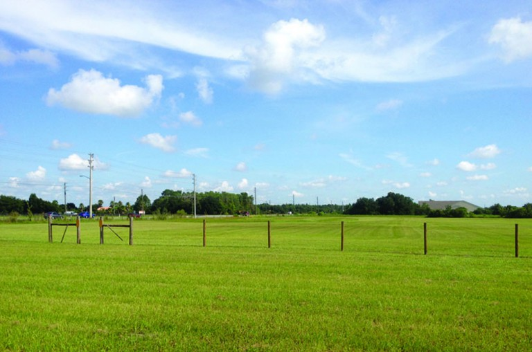 Poinciana lot feature size